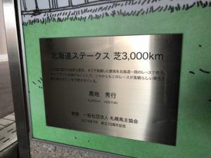 芝3000