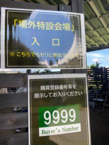 セレクション・サマー_200830